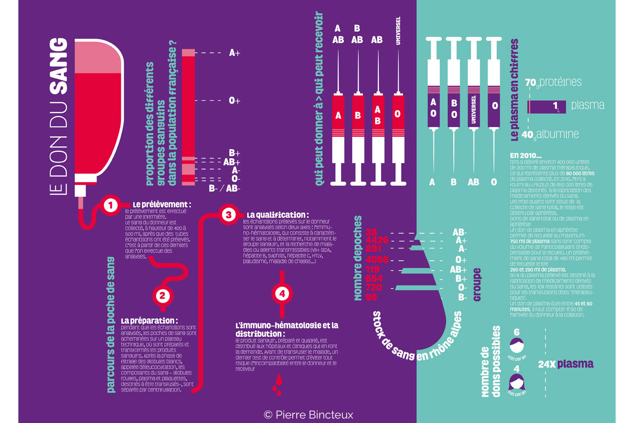 infographie don du sang